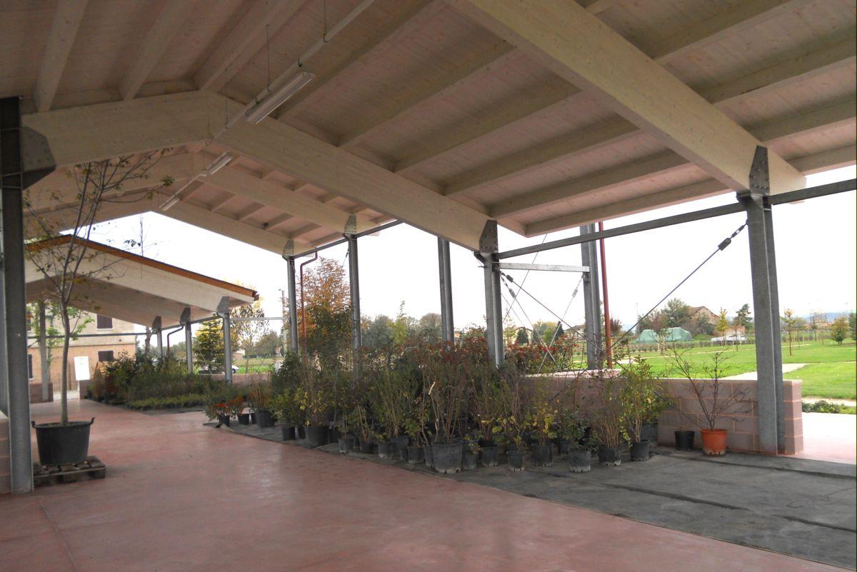 Alcune piante provenienti dal vivaio vengono ricoverate sotto la serra per la vendita